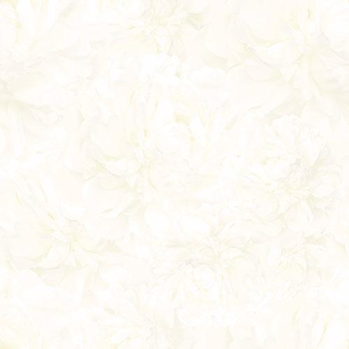 Gạch lát nền 60x60 Prime 09017