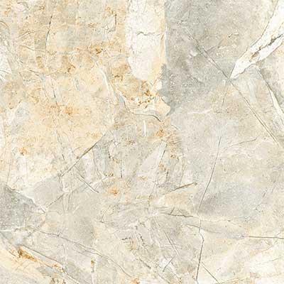 Gạch ốp lát Viglacera 5050 H502