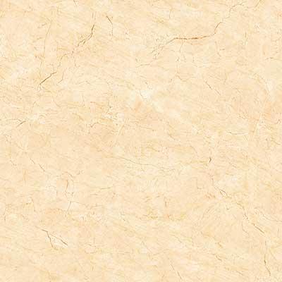 Gạch ốp lát Viglacera 5050 H503