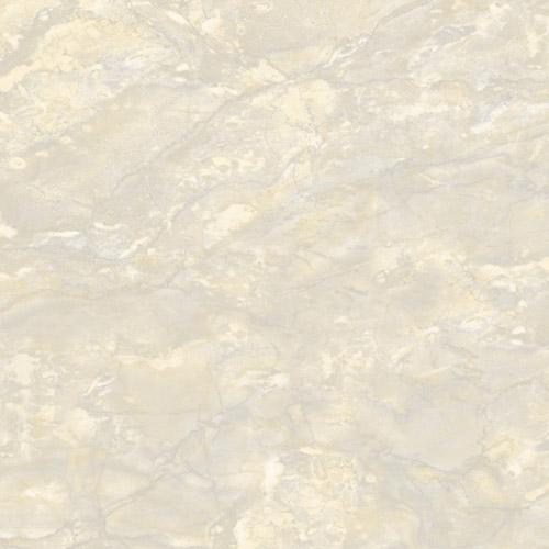 Gạch Mikado 50x50 MS5019