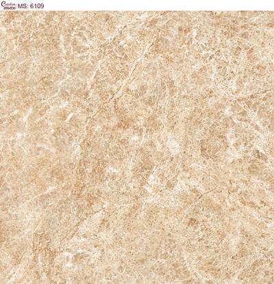 Gạch lát nền 60x60 Catalan 6109