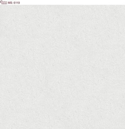Gạch lát nền 60x60 Catalan 6119