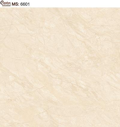 Gạch lát nền 60x60 Catalan 6601