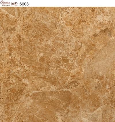 Gạch lát nền 60x60 Catalan 6603