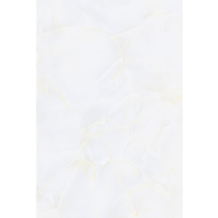 Gạch ốp 30x45 Vitto C021