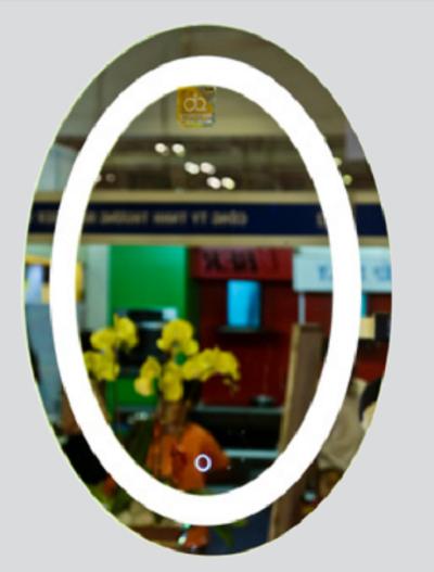 Gương phòng tắm đèn led Đình Quốc DQ 67033