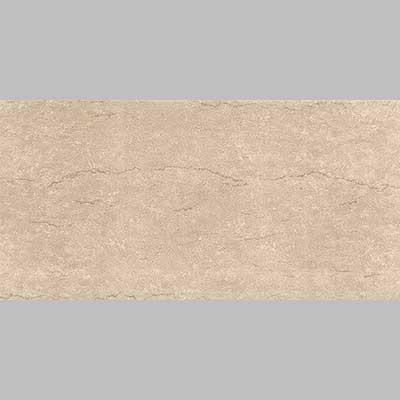 Gạch men matt Viglacera 3060 F3602