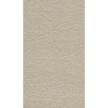 Gạch ốp lát Taicera 30x60 G63522