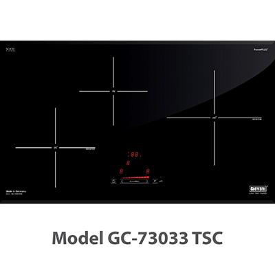Bếp từ Giovani GC-73033 TSC