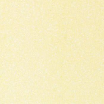 Gạch lát Granite Bạch Mã 60x60 MGM60205