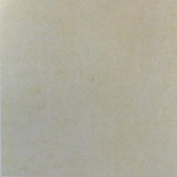 Gạch lát Granite Bạch Mã 60x60 MSV6007