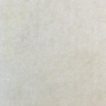 Gạch lát Granite Bạch Mã 60x60 MSV6008