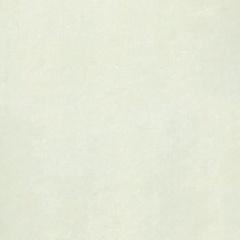 Gạch Taicera 80x80 P87703N