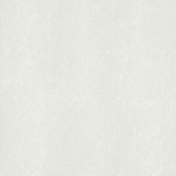 Gạch Taicera 80x80 P87762N