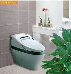 Bệt Toilet Govern YKL-F3H