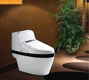 Bệt Toilet Govern YKL-F31H