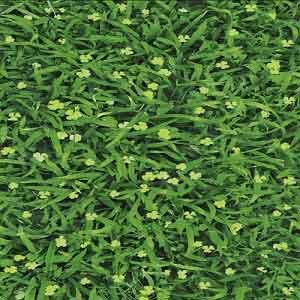 Gạch lát sân vườn 40x40 VC4505