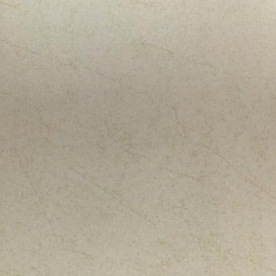 Gạch Taicera 60x60 G68915S
