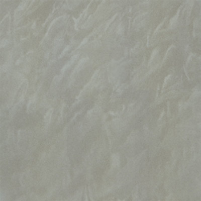 Gạch Taicera 60x60 P67048N