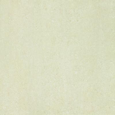 Gạch Taicera 60x60 P67313N
