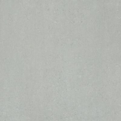 Gạch Taicera 60x60 P67318N