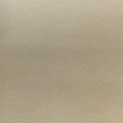 Gạch Taicera 60x60 P67403N