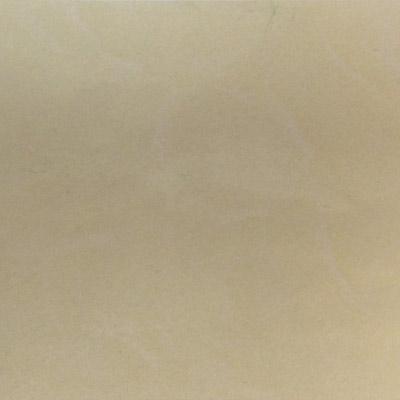 Gạch Taicera 60x60 P67412N