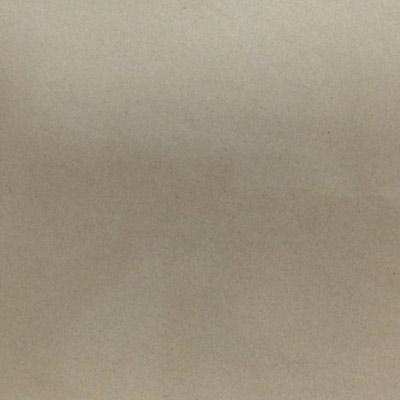 Gạch Taicera 60x60 P67542N1