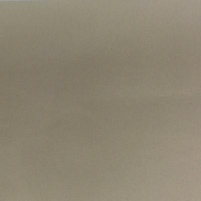 Gạch Taicera 60x60 P67625N1