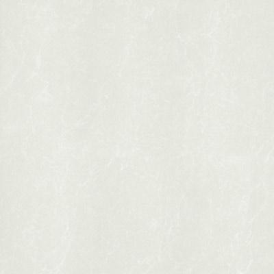 Gạch Taicera 60x60 P67762N