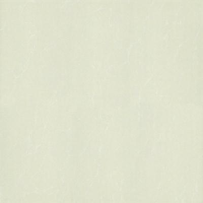 Gạch Taicera 60x60 P67763N1