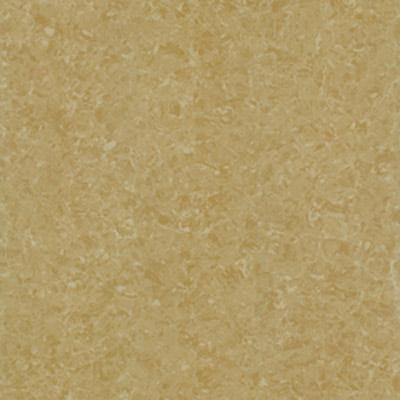 Gạch Taicera 60x60 P67771N
