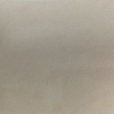Gạch Taicera 60x60 P87532N