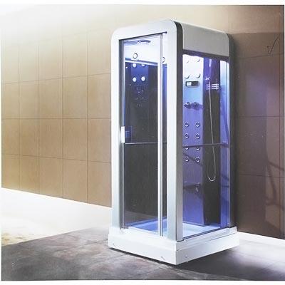 Phòng xông hơi ướt Daelim W-6006